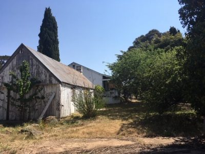 Gold Creek Homestead Community and Stakeholder Panel